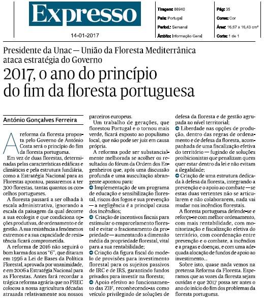 """Artigo de opinião - """"2017, o ano do princípio  do fim da floresta portuguesa"""""""