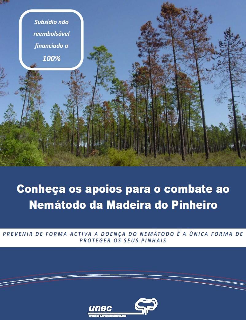 Conheça os apoios para o combate ao Nemátodo da Madeira do Pinheiro