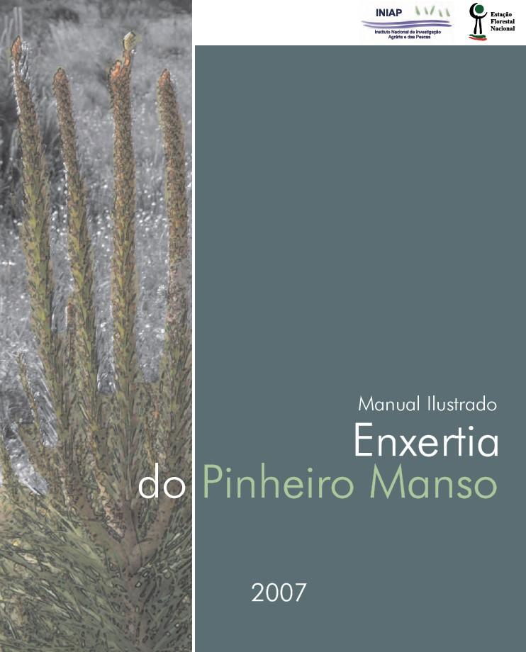 Manual Ilustrado de Enxertia do Pinheiro Manso